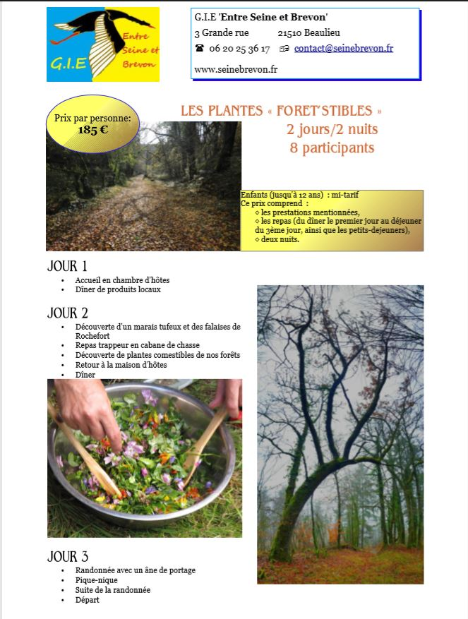 fiche 3 foretstible